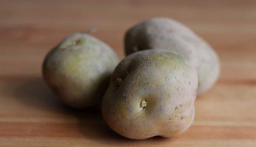皮が緑色になったジャガイモ。食べるためには厚めの皮むきが必要。